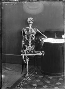 squelette à un bar